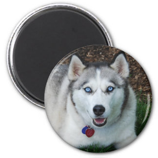 Siberian Husky Happy Face Gifts - Shirts, Posters, Art, & more Gift ...