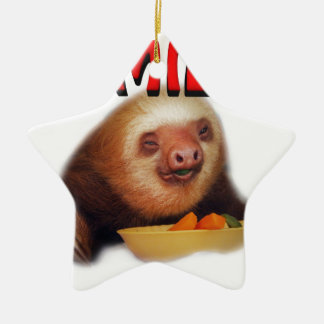 smiling slothie ceramic star decoration