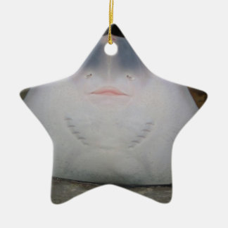 Smiling Sting Ray Swimming in Water Ceramic Star Decoration