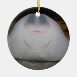 Smiling Sting Ray Swimming in Water Double-Sided Ceramic Round Christmas Ornament