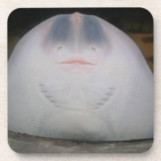 Smiling Sting Ray Swimming in Water Drink Coasters