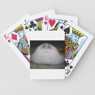 Smiling Sting Ray Swimming in Water Bicycle Card Decks