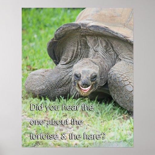 Smiling Tortoise Poster