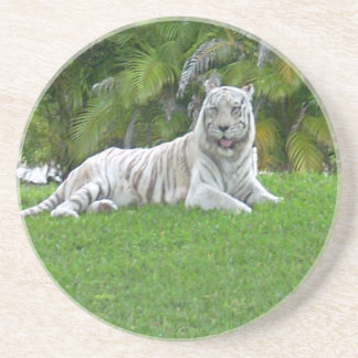 Smiling White Tiger and Palm Trees Drink Coasters
