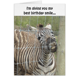 Smiling Zebra Birthday Greeting Card