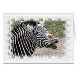 Smiling Zebra Greeting Card