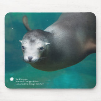 Smithsonian | Sea Lion Mouse Mat