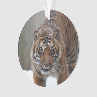 Smithsonian | Sumatran Tiger Damai Ornament