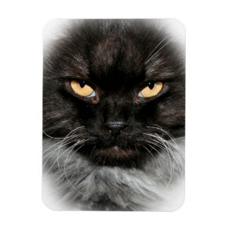 SMOKEY PERSIAN CAT MAGNET FLEXIBLE MAGNET