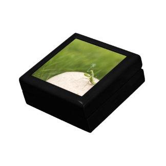 Smoking mantis small square gift box