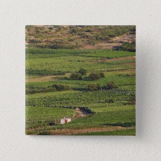 Smokvica vineyards on Korcula from the Toreta 15 Cm Square Badge