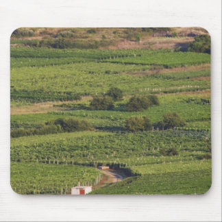 Smokvica vineyards on Korcula from the Toreta Mouse Mat
