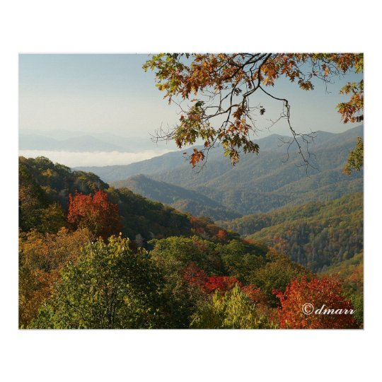 Smoky Mountain Autumn Foliage Poster