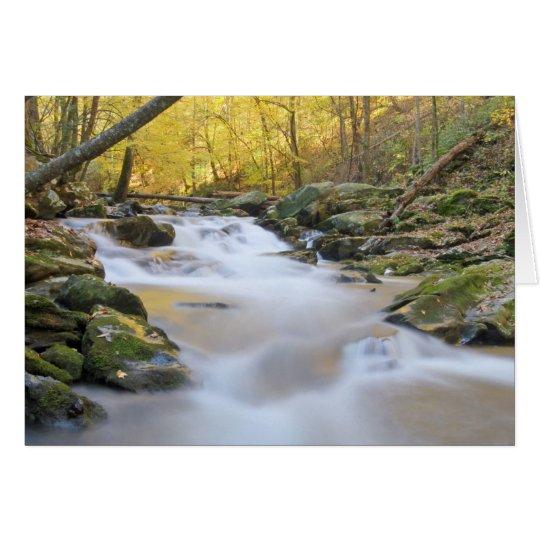 Smoky Mountain Stream Card