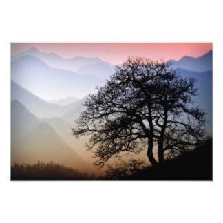 Smoky Mountain Sunset from the Blue Ridge Parkway Photo Print