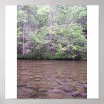 Smoky Mountains Park River by Jocelyn Burke Print