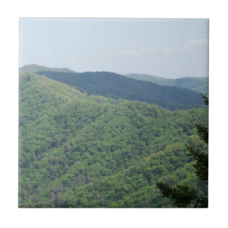 Smoky Mountains Trivet Tile 1