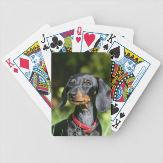 Smooth-haired Miniature Dachshund 3 Bicycle Playing Cards