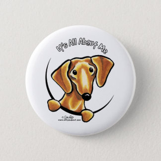 Smooth Red Dachshund Its All About Me 6 Cm Round Badge