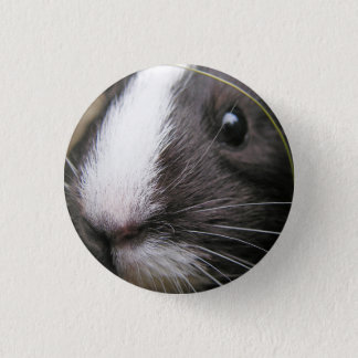 Smooth, Short Hair, Black and White Guinea Pig 3 Cm Round Badge