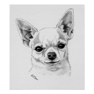 Smoothcoat Chihuahua Champion Poster