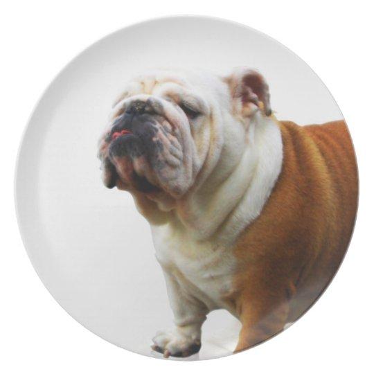 Smug Bulldog Plate