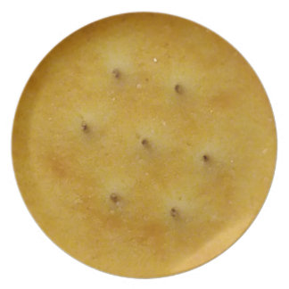 Snack Cracker Party Plate