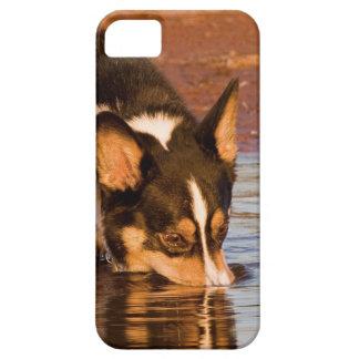 Snack Rescue iPhone 5 Case