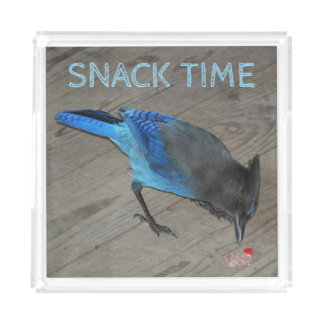 Snack Time Western Blue Jay Photo Acrylic Tray