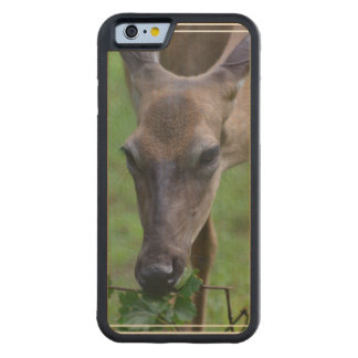 Snacking Deer Carved® Maple iPhone 6 Bumper Case