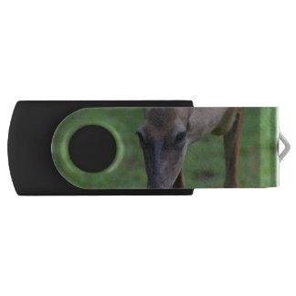Snacking Deer Swivel USB 2.0 Flash Drive
