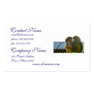 Snacking Squirrel Monkey Pack Of Standard Business Cards