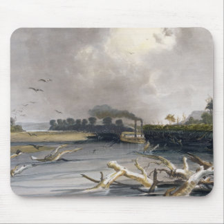 Snags (sunken trees) on the Missouri, plate 6 from Mouse Mat
