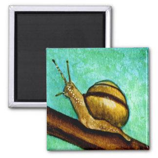 Snail 1 Magnet