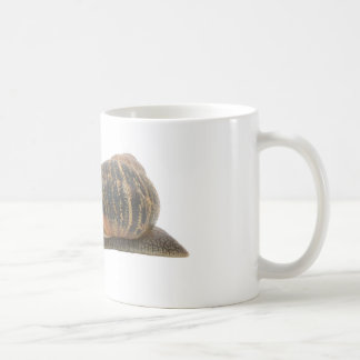 Snail and flowers coffee mug