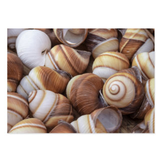 Snail Pack Of Chubby Business Cards