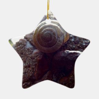 snail ceramic star decoration
