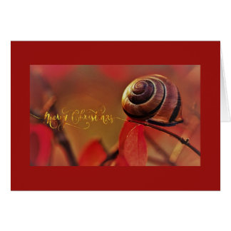 Snail Christmas Greeting Card