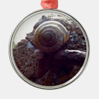 snail christmas ornament