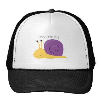 Snail Crossing Cap