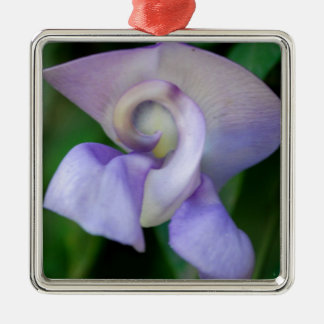 Snail Flower Silver-Colored Square Decoration