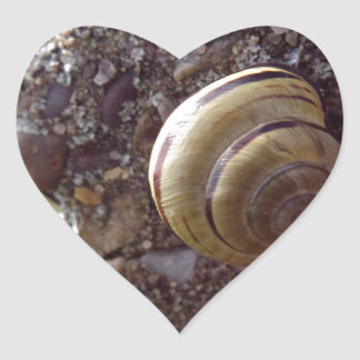 Snail Heart Sticker