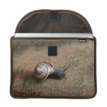 "Snail Macbook Pro 13"" sleeve"