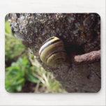 snail mousemats