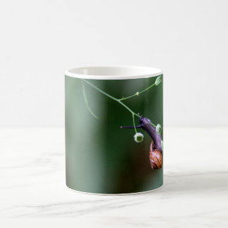 Snail Classic White Coffee Mug