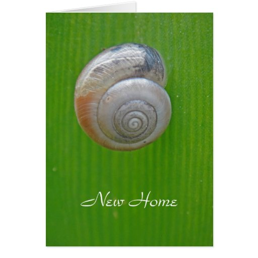Snail new home card