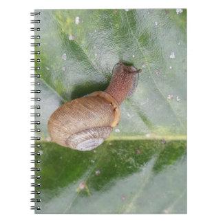 Snail on a leaf notebook