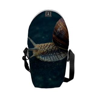 Snail On Blue Closeup, Nature Animal Photograph Commuter Bag