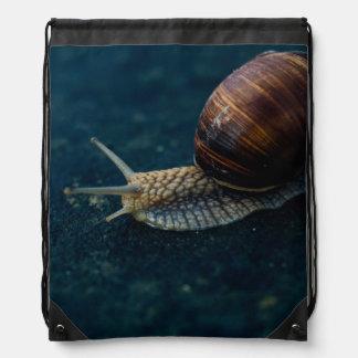 Snail On Blue Closeup, Nature Animal Photograph Drawstring Bag