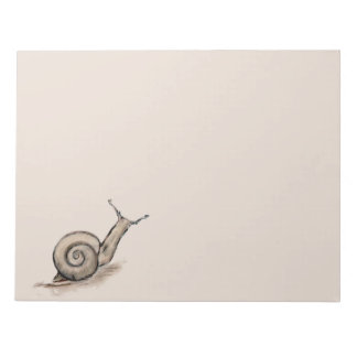 Snail original pastel zen drawing notepads
